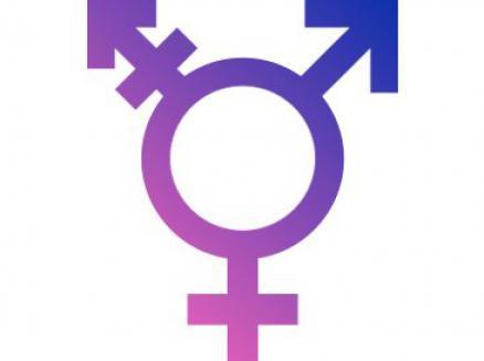 foto articulo transexualidad