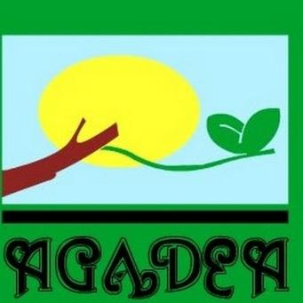 AGADEA.jpg